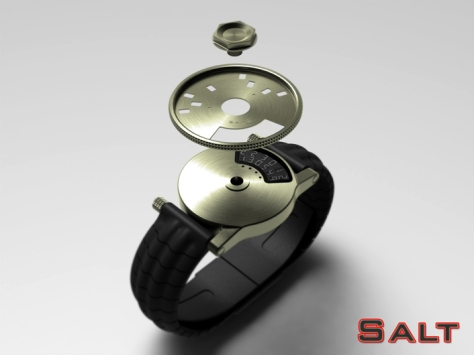 salt_lcd_watch_lets_you_customise_time_discs